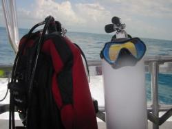Diving off Tavernier.